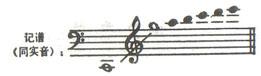 大提琴演奏介绍